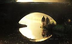 29288 (benbobjr) Tags: birmingham westmidlands midlands england english uk unitedkingdom gb greatbritain british britain birminghamuk wolverhampton blackcountry canal water creek stream river reflection urban path pathway footpath bridleway publicfootpath jamesbrindley grandcross britishtransportcommission staffordshireandworcestershirecanalsociety dunstallwaterbridgeno63 dunstallwaterbridge aldersleyroad