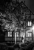 63 of 365: Groceries And Old House (tainkeh) Tags: night october visitnordsjaelland window street denmark homeofhamlet visitdenmark helsingør 2017 tree oplevhelsingør dark woman timbered 365 house elsinore oplevhelsingor project365 europa greatercopenhagen europe danmark