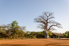 SENEGAL -  317 (Giulio Mazzini) Tags: adventure africa avventure black desert face free holiday landscape libertà portrait river senegal sun teranga world