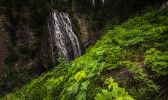 Narada falls! (wandering indian) Tags: nationalparkservice rainier nps kedardatta washington nature landscape travel camping hiking sunset fog waterfalls water longexposure leaves trees mountains deer wildlife reflection peak sunrise snow fall