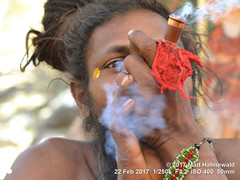 2017-02b Shivratri Mela (60b) (Matt Hahnewald) Tags: matthahnewaldphotography facingtheworld character face eyes fullbeard pipe smoke smoking chillum barechested marijuana hashish ganja bhang charas bodylanguage gesture bothhands spiritual religious traditional cultural holy mela sadhu bhavnath asian male young man picture primelens street portrait posing authentic stoned recreational dreadbun gujarat hinduism horizontal indian junagadh nikond3100 outdoor shivratri topbun travel 50mm expression headshot nikkorafs50mmf18g clarity 1200x900pixels resized colour person 4x3ratio seveneighthsview emotional closeup consensual india lookingatcamera