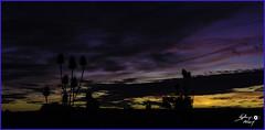 Crépuscule au Plessis (touflou) Tags: ciel nuages coucherdesoleil crépuscule soir nuit sky clouds