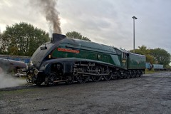 Photo of A4 60009 'Union Of South Africa' on the Coal Road