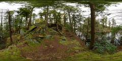 US-NY Fahnestock SP - Pelton Pond Trail 2017-10-15 (N-Blueion) Tags: