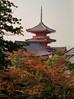 Pagoda (Tim Ravenscroft) Tags: pagoda kiyomizudera kyoto japan
