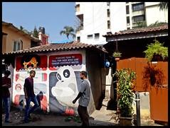 Waroda Road : Bandra : Wall Art (indianature13) Tags: indianature street streetlife streetart graffiti wallart wallmural bandrastreetart bandrawallart bandragraffiti art painting culture society bandra bombay mumbai india maharashtra november 2017 urbanculture warodaroadbandra mural mumbaipublicmurals bap bollywoodartproject ranjitdahiya startindia mumbaiwallmural mumbaiwallpainting 400050 mumbai400050 bandrasuburb vandre