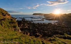 Curio Bay Sunset (Panorama Paul) Tags: paulbruinsphotography wwwpaulbruinscoza newzealand curiobay southisland sunset rocks waves sandflies nikond800 nikkorlenses nikfilters