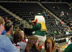 U of Oregon volleyball/Arizona (LarrynJill) Tags: uo ducks volleyball mattknightarena campus sports eugene or