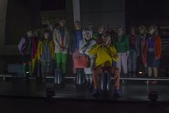 0058www.BeeArt.nl Debby Gosselink_Theater de plaats Arnhem Centraal