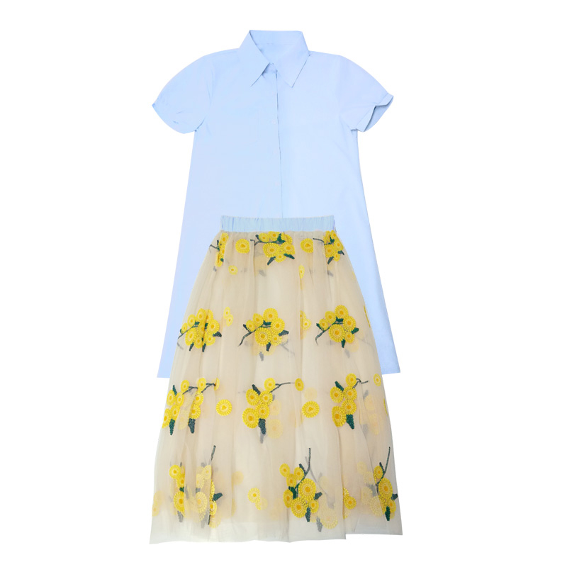 Fu Nani small fresh and stylish two piece in the long section of gauze dress embroidery color short suit skirt in summer