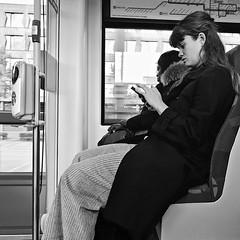 DSCN4082 (Akbar Simonse) Tags: holland netherlands nederland train trein publictransport telefoon smartphone girl streetphotography streetshot straatfotografie straatfoto people candid zwartwit bw blancoynegro bn monochrome squareformat vierkant akbarsimonse