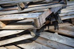 Old Pallets (Phil Roeder) Tags: jacksoncounty iowa taborhome wood pallets boards canon6d canonef50mmf18