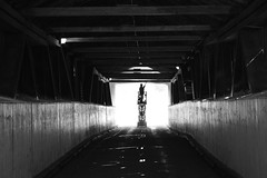 Maintenance & Cleaning Of The West Montrose Covered Bridge .... West Montrose, Ontario (Greg's Southern Ontario (catching Up Slowly)) Tags: nikon nikond3200 blackandwhitephotography monochrome shadowsandlight westmontroseontario coveredbridge westmontrosecoveredbridge cleaningcoveredbridge