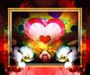 Endless Love (mfuata) Tags: endless sonsuz love aşk heart kalp pink pembe rose gül orchid orkide flover çiçek depth derinlik sense his