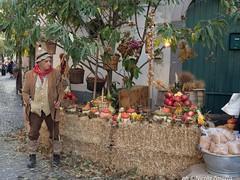 Sagra della castagna - Melfi (PZ) (NIKOZAR (Nicola Zaratta)) Tags: autunno sagra melfi sagradellavarola castagne varola olympusm14150mmf4056ii olympusem10markii olympus
