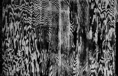 Leavenworth Plywood Memorial (Pictoscribe) Tags: pictoscribe abstract macro fractal patterns li fundamental shapes