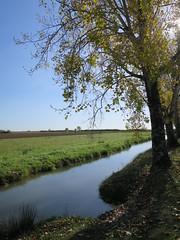 Sentiers des arts 2017, Saint-Fort-sur-Gironde, Port Maubert (17) (Yvette G.) Tags: saintfortsurgironde portmaubert sentiersdesarts artcontemporain landart charentemaritime 17 poitoucharentes nouvelleaquitaine