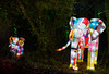 8A0A7363 (ct_purley) Tags: isle wight canon 5d mark iv robin hill robinhill squirel run diwali night time lights