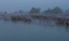 Cerknica Lake (happy.apple) Tags: otok cerknica slovenia si cerkniškojezero cerknicalake slovenija mornig fog autumn fall jesen megla jutro reflection odsev spiderweb intermittentlake presihajočejezero