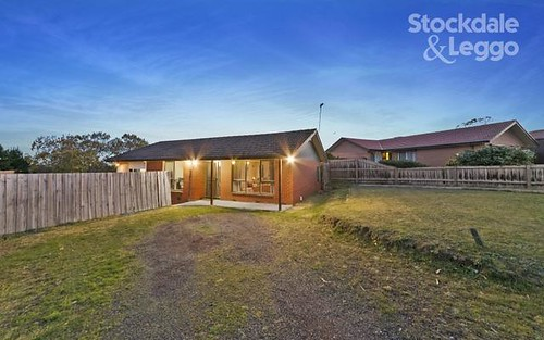 1 William Perry Cl, Endeavour Hills VIC 3802