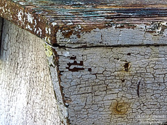 (Aaron Edmonds) Tags: crackle paint decay ruraldecay ruralexploration wood deterioration weathered