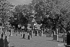 St. John's Cemetery Thriller (rcss2800) Tags: cemetary deceased death grave graves graveyard headstone headstones park grass people tree monochrome blackandwhite