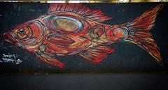 Hamburg (michael_hamburg69) Tags: hamburg germany deutschland streetart urbanart artist künstler dzia stpauli kiez reeperbahn fisch fish red