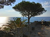 At Bordighera (echumachenco) Tags: sea tree sky rock ocean water landscape outdoor watchpost cannon palm plant leaf wall mediterranean liguria coast italy italia italien bordighera iphone july summer blue