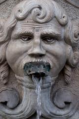 DSCF4156.jpg (Darren and Brad) Tags: brescia italy italian frogmouth fountain italia