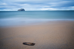 Driftwood at Seacliffe Beach (GlasgowPhotoMan) Tags: eastlothian bassrock gannets morusbassanus seacliffebeach beach water sea firthofforth forth northberwick bigstopper leefilters longexposure canon5d canon5dmkiii gosia isleofmay