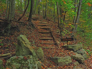 Laurel Highands Trail Head