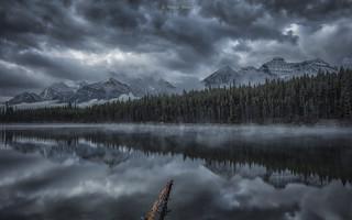 Herbert Lake Morning