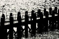 Above water .... (rienschrier) Tags: steiger zeeland vlissingen water blackandwhite zwartwit