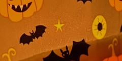 Halloween (conall..) Tags: macromondays theme halloween