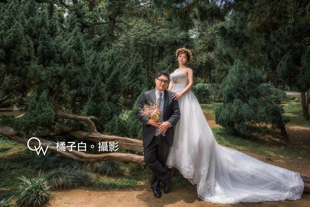敬諺+騰儀-54