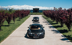 Andes. (Alex Penfold) Tags: bugatti veyron eb110 super sports supersport sport car cars autos alex penfold 2017 supercar hypercar carbon fibre black south america argentina andes grand tour
