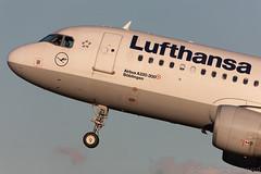 Airbus A320 Lufthansa D-AIZI MSN 4398 (Guillaume Besnard Aviation Photography) Tags: ams eham amsterdamschiphol schipholairport plane polderbaan aircraft airplane canoneos1dsmarkiii canonef500f4lisusm airbus a320 lufthansa daizi msn4398 cn4398 airbusa320