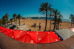 City beach......... (Dafydd Penguin) Tags: fisheye beach view sea sand holiday umbrella barcelona catalunya spain scene palm trees red nikon df nikkor 16mm af f28d