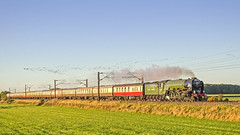 Flying High (DWH284) Tags: tornado 60163 a1pacific eastcoastmainline birkby uksteam geese teestyne express