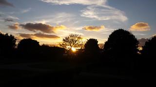 Cornish Sunsets.