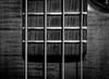 DSCF4518 (bc-schulte) Tags: xt20 fujifilm fujinon bw nahlinse 4 bass saiten strings warwick blackwhite