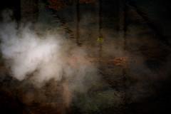 drifting (pat.netwalk) Tags: drift smoke pond copyrightpatrickfrank bildgutch myst art light darknessandlight softness
