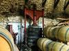 Bodega Le Chateau de Tiregand. (Airbeluga) Tags: bergerac bodega chateaudetiregand europa francia leseyziesdetayac vinos hermanamiento creysse nouvelleaquitaine fr