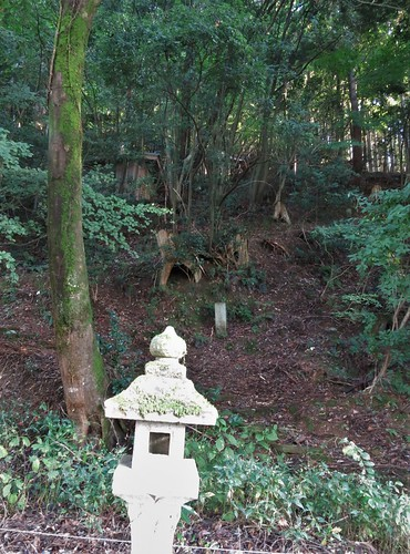 hillside from Hino Shrine shows more shrines