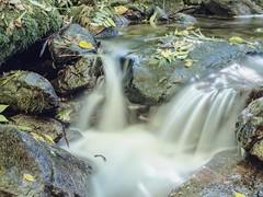 Herbststimmung (schasa68) Tags: austria upperaustria oberösterreich nature natur wasser water bach bachlauf romantic autumn herbst linz bachlberg longexpose langzeitbelichtung stones steine felsen