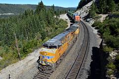 UP ZG2LT-22 (caltrain927) Tags: union pacific railroad loaded intermodal double stack container train ge et44ac tier 4 ac gevo c45ah c45accte ac45ccte emd sd70m eder california ca shed 47