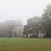 Connecticut+College+in+Fog