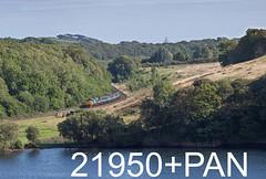 robfrance5d2_21950_to_21959pan_120817_x37402_park_south_askham_2c34_drs_nt_edr16lr6pse15weblowres (RF_1) Tags: 12csvt 2017 37 37402 arriva barrowinfurness brel britain class37 cumbria cumbrian cumbriancoast cumbriancoastline db deutschebahn diesel dieselelectric directrailservices drs ee england englishelectric franchise freight haulage hauling localtrain localtrains loco locomotive locomotivehauled locomotives mark2 mk2 northern northernengland northernrail nucleardecommissioningauthority parksouth passengertrain publictransport rail railfreight rails railway railways rural stoppingtrain stoppingtrains train trains transport travel traveling uk unitedkingdom westmorland