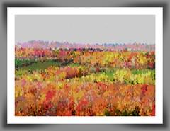 Automne en peinture (FotoAmatrix) Tags: automne québec canada couleurs nature paysage saison feuillage arbres trees color landscape automn