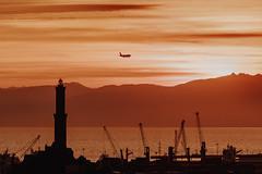 Landing (FButzi) Tags: genova genoa liguria italia italy lanterna lantern lighthouse plane sunset porto port clouds sky cranes sea